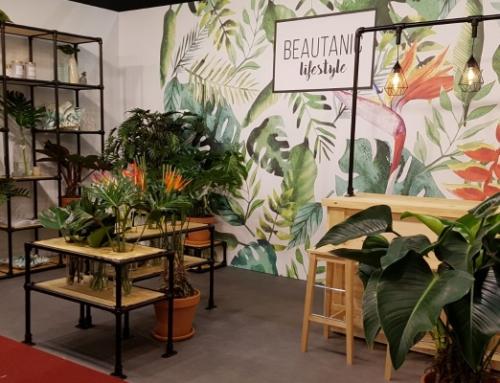 MDK Flowers & Greens introduceert een nieuw merk!